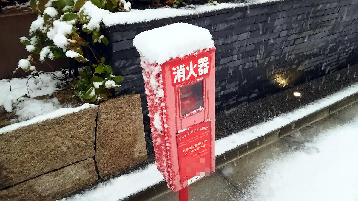都内も大雪でした