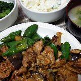 豚肉と茄子と甘長唐辛子の辛味炒め