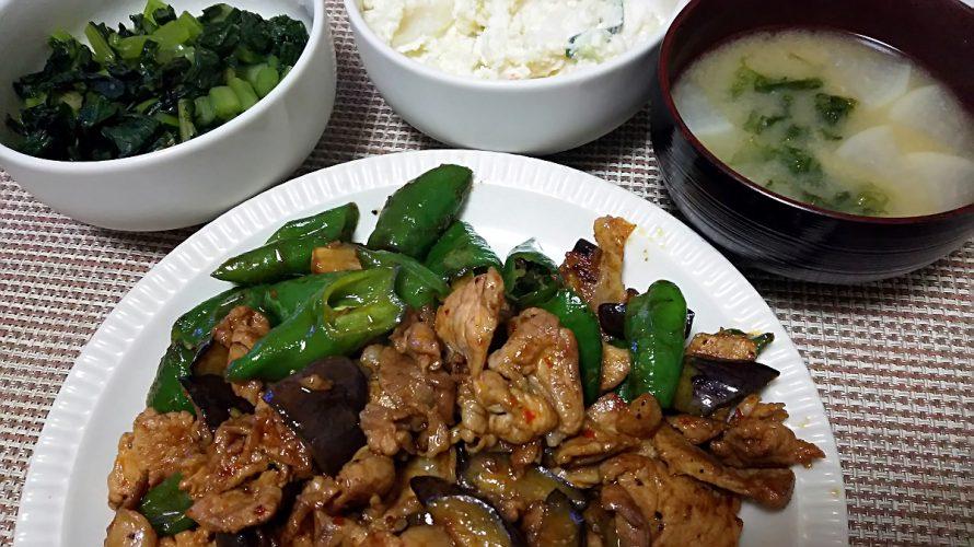 豚肉と茄子と甘長唐辛子の辛味炒め(2018/06/22)