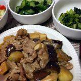 豚肉と茄子とエリンギの味噌ダレ炒め(2018/06/24)