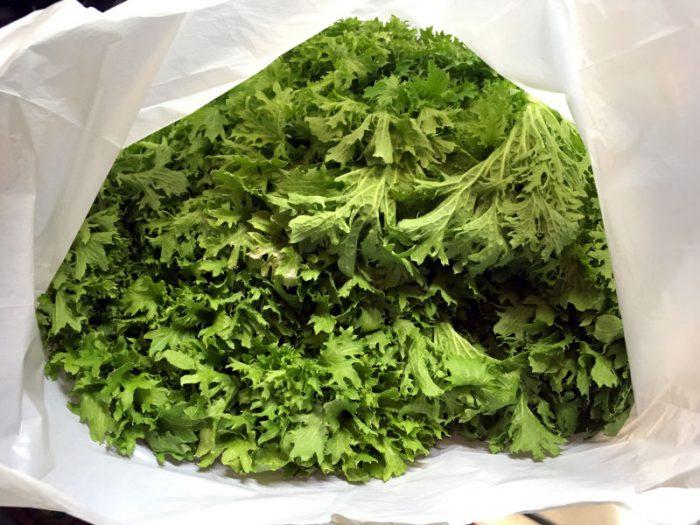 大きな袋に詰まったわさび菜