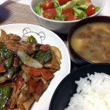 豚肉と野菜のオイスターソース炒め(2019/04/27)