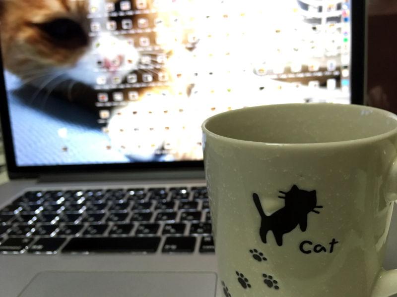 ニトリで買った猫柄のマグカップ