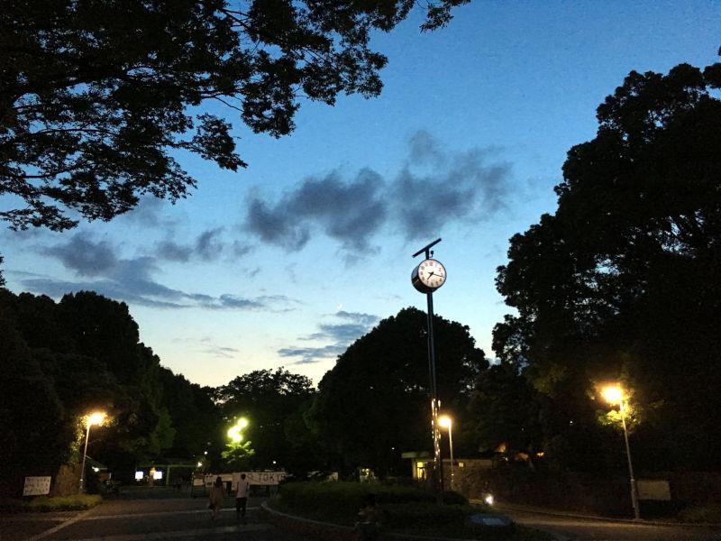 夕焼けと三日月と代々木公園