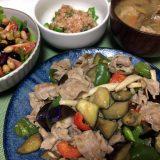 豚バラ肉と野菜の味噌ダレ炒め(2019/07/23)