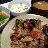 豚こま肉と野菜のピリ辛オイスターソース炒め(2019/10/23)