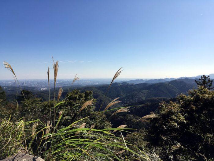高尾山の道中から観る景色