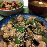鶏もも肉と茄子のにんにく味噌ダレ炒め