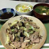 豚肉と茄子とキャベツの味噌ダレ炒め(2020/08/30)