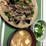 豚肉となすとピーマンの味噌ダレ炒め(2020/11/07)