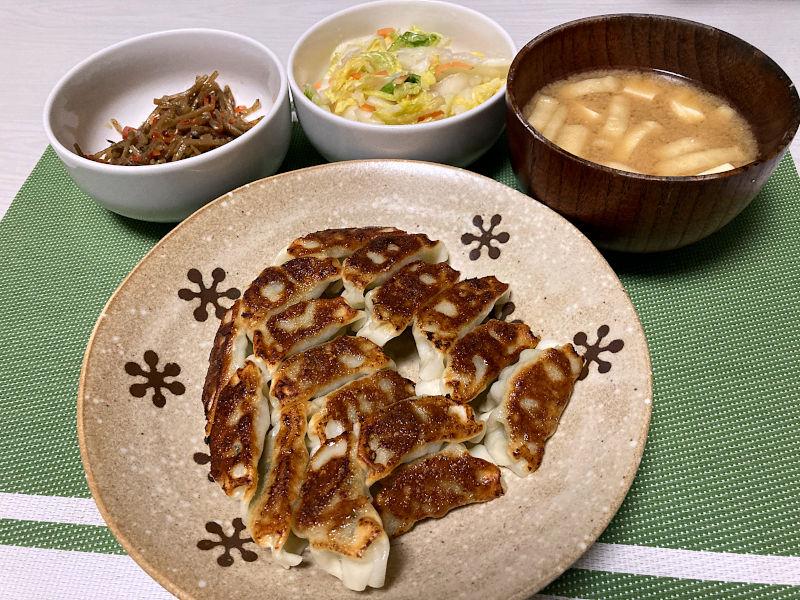 宇都宮肉餃子